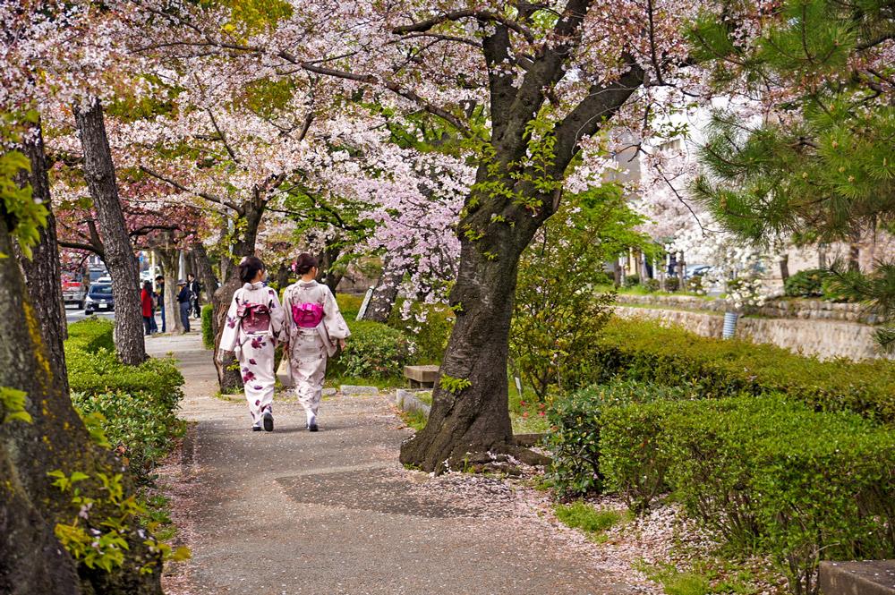 Zwei Japanerinnen im Kimono