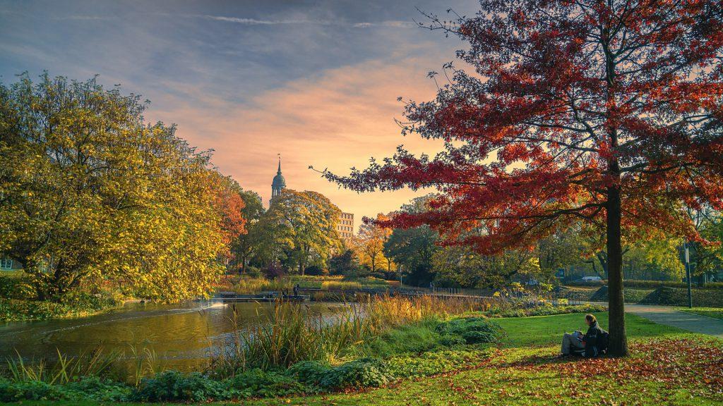 ...und kam die goldene Herbsteszeit; Planten und Blomen erstrahlt im Oktober in leuchtenden Farben